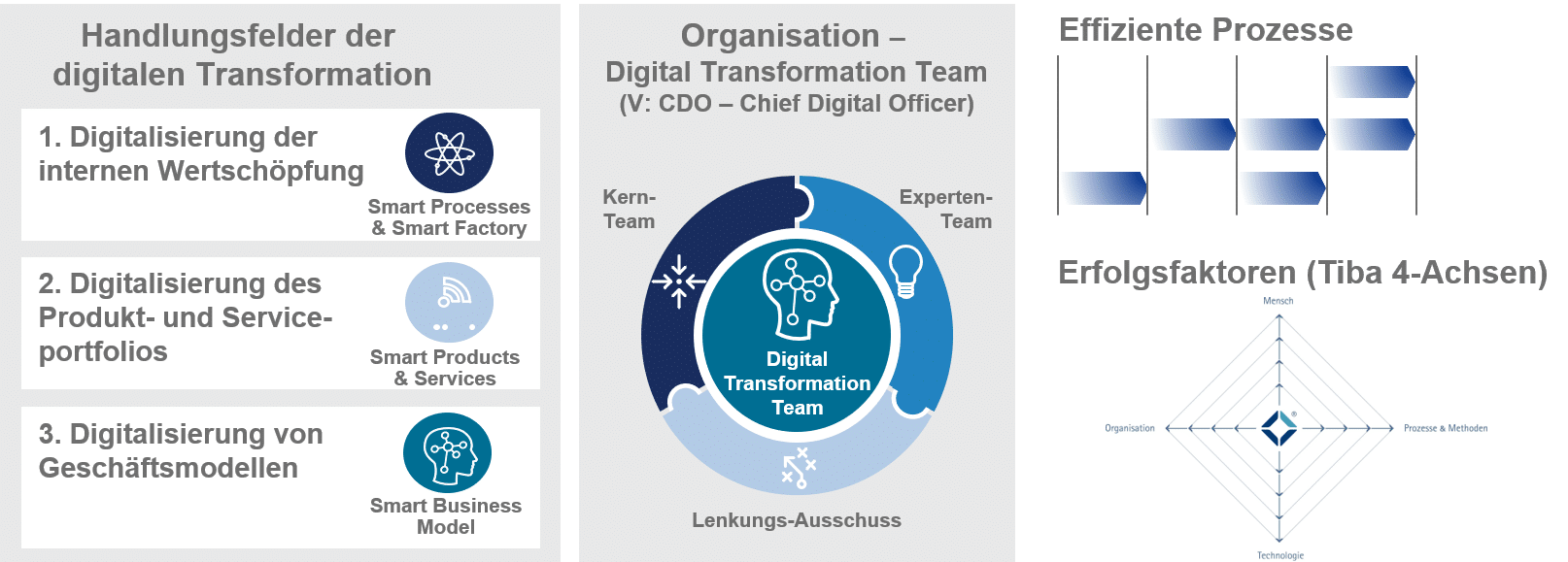 Programmgestaltung der Digitalen Transformation